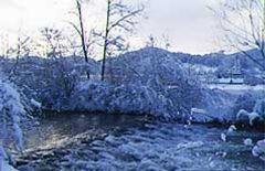 Weiher Winter.jpg